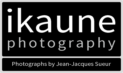 ikaune photography